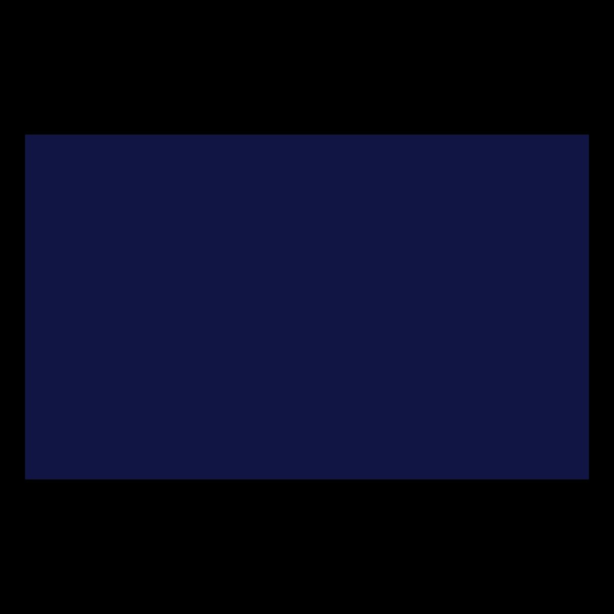 OSF Digital, Inc.